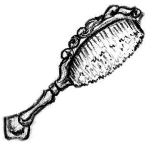tools-hairbrush-ivory